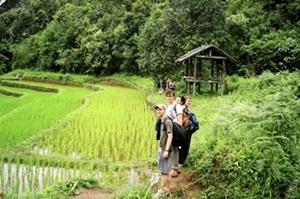 Voluntarios en Tailandia haciendo una excursión en su tiempo libre