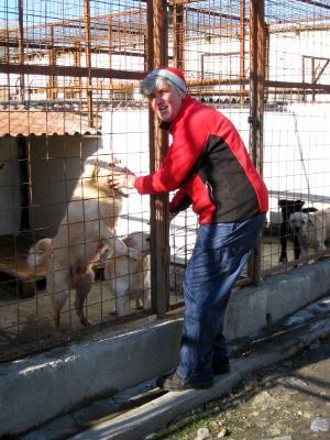 Veterinary Medicine in Romania