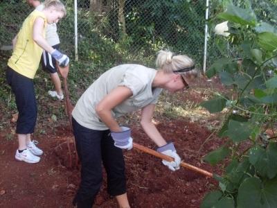 Voluntarias trabajando en granja en Jamaica