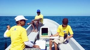 Científicos locales recogen información en el Proyecto de Buceo y Consevación Marítima en Belice.