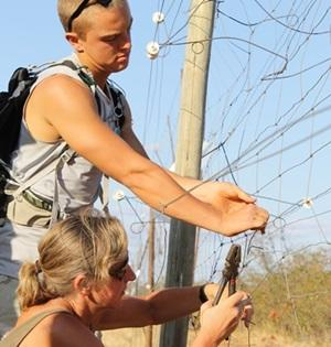 Volunteers doing maintenance work at the Conservation project in Southern Africa