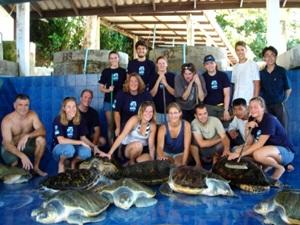 Volunteer environmental work in Thailand