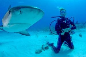 Una voluntaria del proyecto de Conservación de Tiburones junto a un tiburón en Fiyi