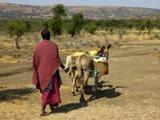 Tanzania - Proyecto Comunitario Masái