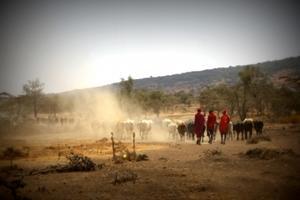 Comunidad masái en proyecto Comunitario en Tanzania