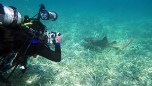 Conservation & Community in Belize