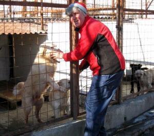 Veterinary internships in Romania